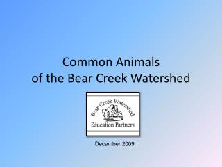 Common Animals  of the Bear Creek Watershed