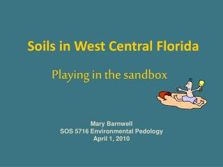 Soils in West Central Florida
