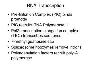 RNA Transcription