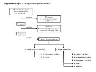 154  Lactobacillus  species described in literature  till January 2013