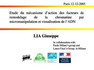 Paris 12-12-2005