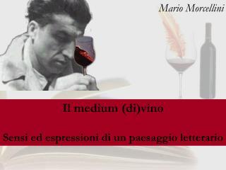 Il medium (di)vino Sensi ed espressioni di un paesaggio letterario