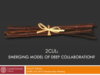 2CUL:  Emerging Model of Deep Collaboration?