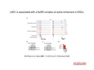 WA Whyte  et al .  Nature 000 ,  1 - 5  (2012) doi:10.1038/nature10805