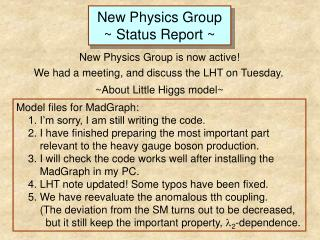 New Physics Group ~ Status Report ~