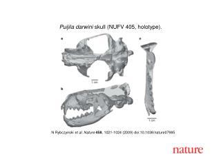 N Rybczynski  et al.  Nature 458 , 1021-1024 (2009) doi:10.1038/nature07985
