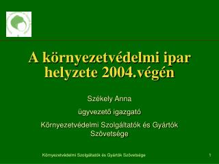 A környezetvédelmi ipar helyzete 2004.végén