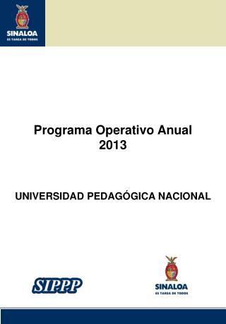 Programa Operativo Anual 2013