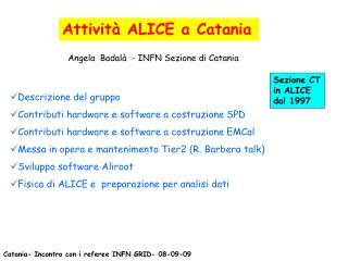 Attività ALICE a Catania