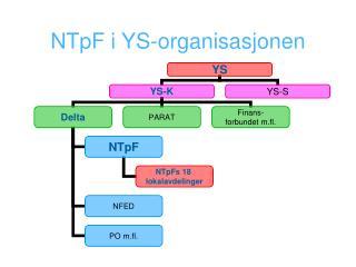 NTpF i YS-organisasjonen