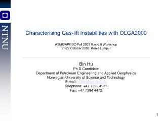 Characterising Gas-lift Instabilities with OLGA2000 ASME/API/ISO Fall 2003 Gas-Lift Workshop