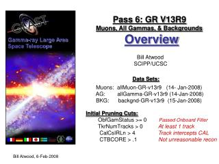 Pass 6: GR V13R9 Muons, All Gammas, & Backgrounds Overview