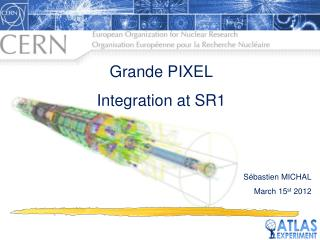 Grande PIXEL Integration at SR1 Sébastien MICHAL March 15 st  2012