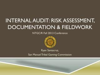 Internal Audit: Risk Assessment, Documentation & Fieldwork