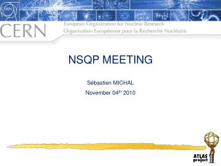 NSQP MEETING Sébastien MICHAL November 04 th  2010