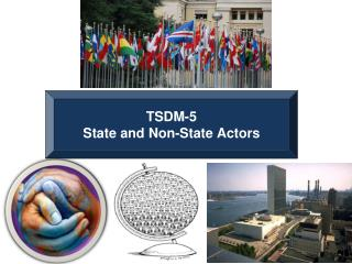 TSDM-5 State and Non-State Actors