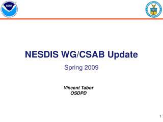 NESDIS WG/CSAB Update Spring 2009
