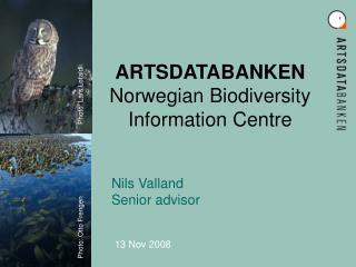 ARTSDATABANKEN  Norwegian Biodiversity Information Centre