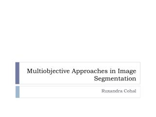 Multiobjective  Approaches in Image Segmentation