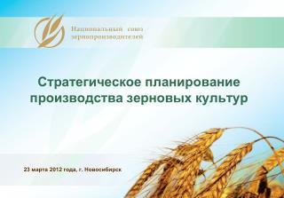 Стратегическое планирование производства зерновых культур