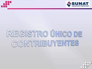REGISTRO ÚNICO DE CONTRIBUYENTES