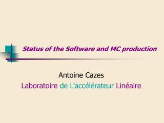 Status of the Software and MC production