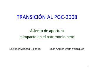 TRANSICIÓN AL PGC-2008