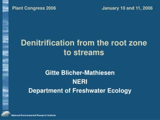 Denitrification from the root zone to streams