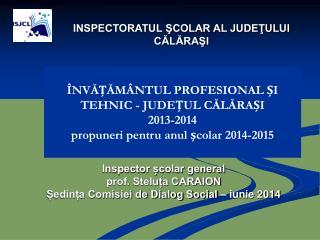 Inspector școlar general  prof. Steluța CARAION   Ședința Comisiei de Dialog Social – iunie 2014