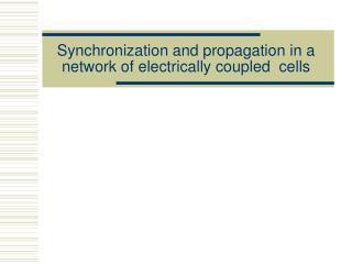 Synchronization and propagation i n a  ne twork  o f  electrically c oupled  cells