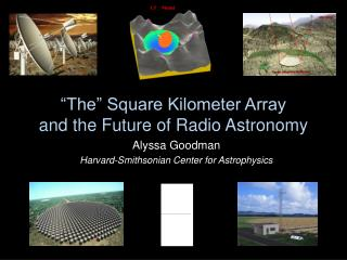 """""""The"""" Square Kilometer Array  and the Future of Radio Astronomy"""