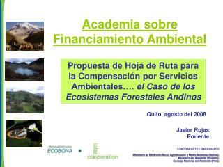 Academia sobre Financiamiento Ambiental