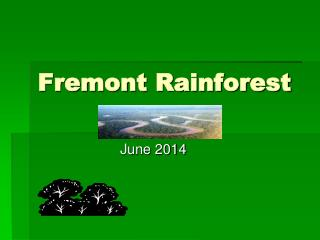 Fremont Rainforest