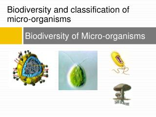 Biodiversity of Micro-organisms