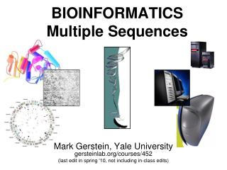 BIOINFORMATICS Multiple Sequences