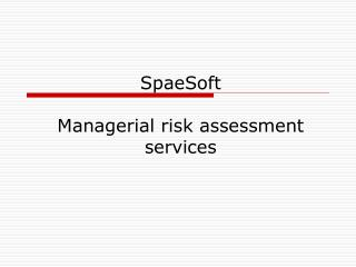 SpaeSoft Managerial risk assessment services