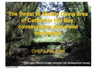 The threat to Middle Camp area of Catherine Hill Bay; conservation areas and townscape