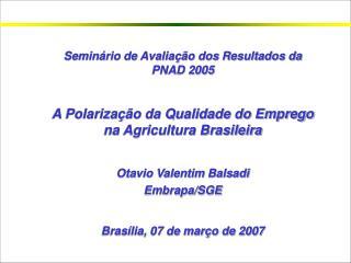 Seminário de Avaliação dos Resultados da PNAD 2005