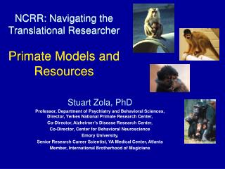 NCRR: Navigating the Translational Researcher Primate Models and Resources