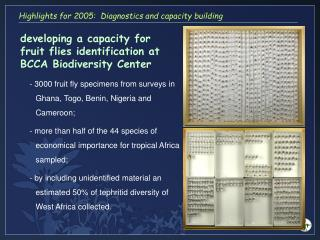 developing a capacity for fruit flies identification at BCCA Biodiversity Center
