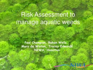 Risk Assessment to manage aquatic weeds