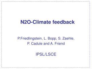 N2O-Climate feedback
