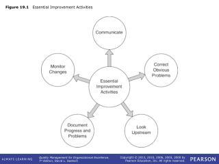 Figure 19.1    Essential Improvement Activities