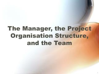 The Manager, the Project Organisation Structure,  and the Team