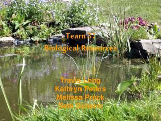 Team 3 : Biological Resources
