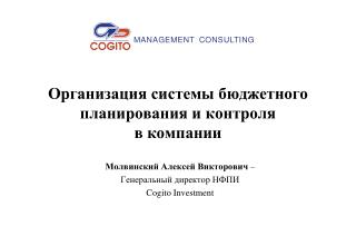 Организация системы бюджетного планирования и контроля  в компании