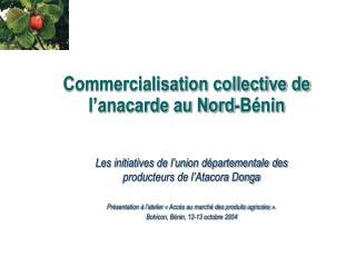 Commercialisation collective de l�anacarde au Nord-B�nin
