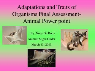 Adaptations and Traits of Organisms Final Assessment-Animal Power point