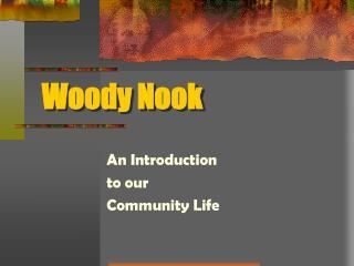 Woody Nook