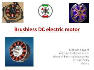 Brushless DC electric motor